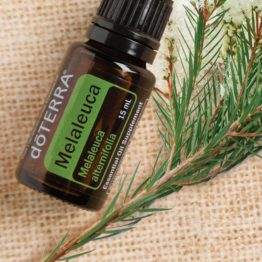 DöTERRA Melaleuca - Tea Tree