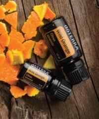 Wild orange - Wilde sinaasappel